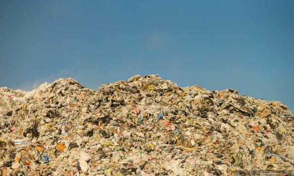 Источником запаха являются поля фильтрации жидких отходов на мусорном полигоне в Майминском районе