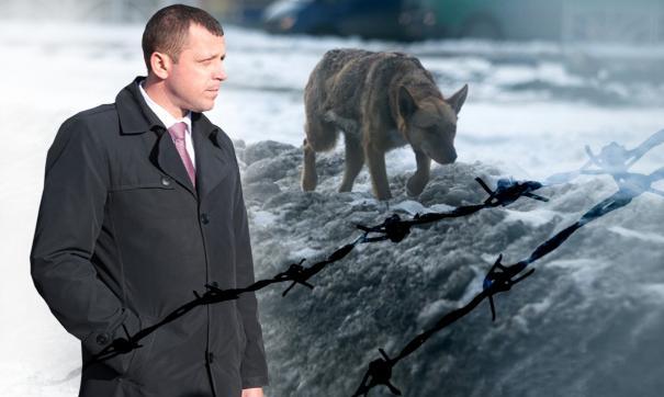 Закон о гуманном обращении с животными могут поставить под вопрос