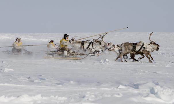 На «Арктике-2020» о перспективах северных регионов расскажет замглавы Минвостокразвития
