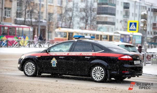 Арестовали предполагаемых убийц братьев Петровых, которые пропали в январе 2016 года