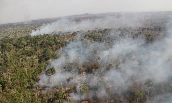 Основная причина пожаров весной, по данным ведомства, — это несанкционированное сжигание сухих трав на полях.