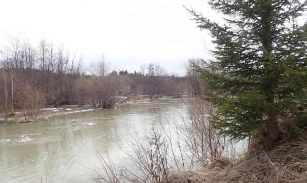 Загрязнение рек на севере Свердловской области не прекращается