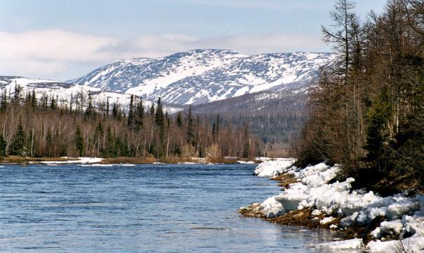 Найденные бактерии могут решить основную экологическую проблему Арктики