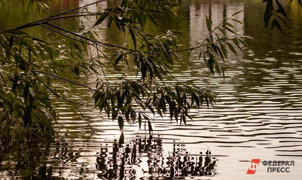 Томичи предложили благоустроить территорию возле городских озер