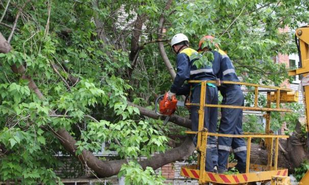 Из-за урагана в некоторых районах были перебои с электричеством