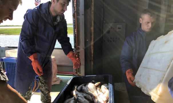 На Ямале рыбаки получили дополнительное время на промысел из-за ранней весны