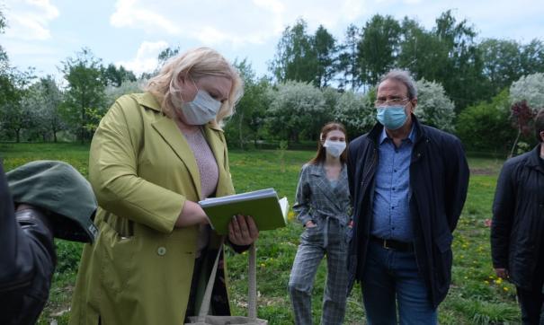 Экологи оценили «протестную» высадку деревьев в Екатеринбурге
