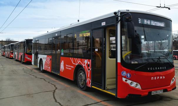 В Перми реформируют пассажирские перевозки