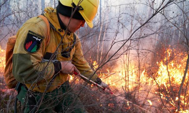 На Камчатке ликвидировали пожар, бушевавший 10 дней