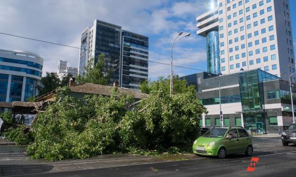 Лето в Екатеринбурге начнется с облачной погоды и дождей