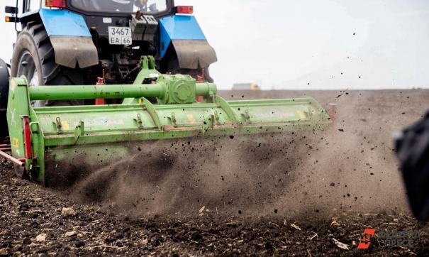 Приморские аграрии к лету произвели продукции на 20 млрд рублей