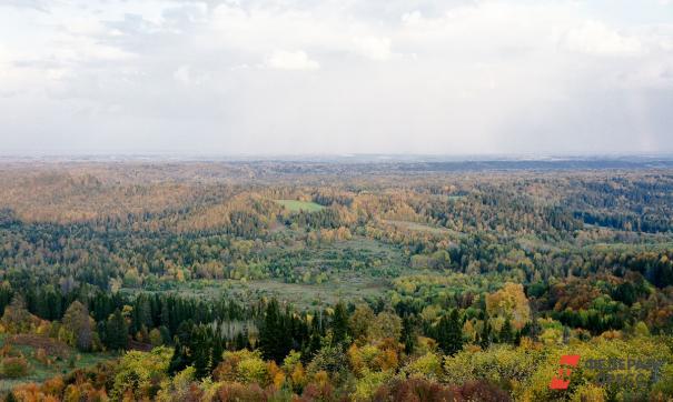 Несмотря на отсутствие заметных запасов полезных ископаемых, территория имеет серьезный потенциал развития