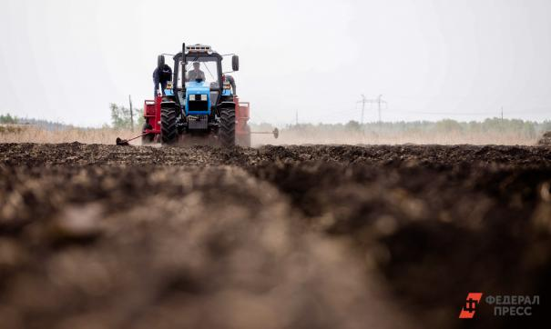 Общая посевная площадь превысила 26 тысяч гектаров