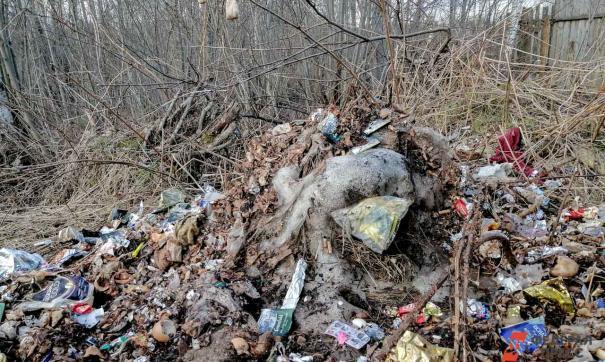 На месте свалок будут комплексы переработки отходов
