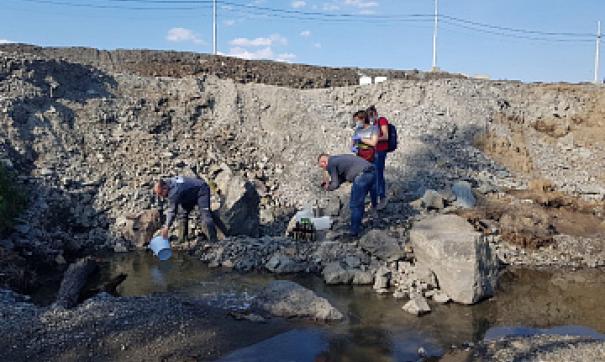 Пробы с почвы