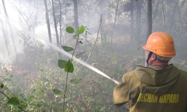На территории округа действует 18 лесных пожаров