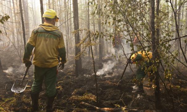 На территории округа зарегистрировано 13 пожаров в лесах