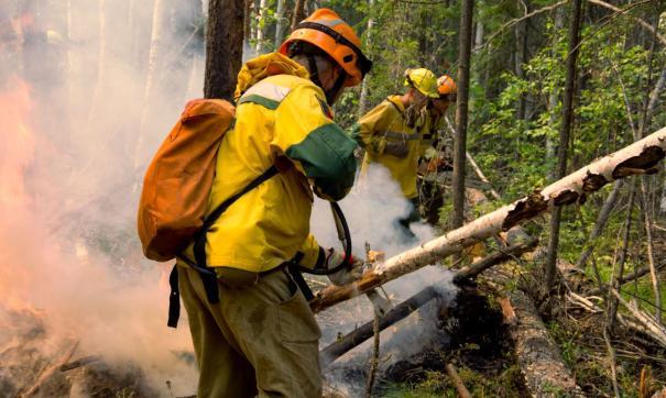 В Югре действует 23 лесных пожара
