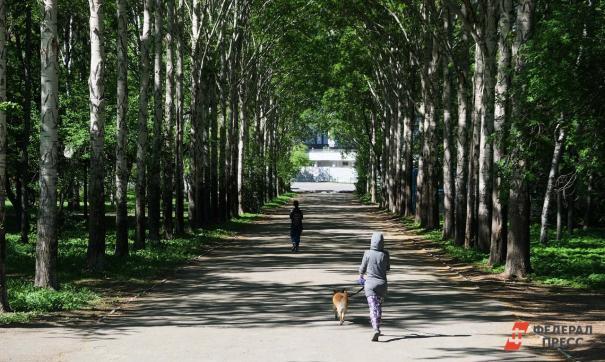 В екатеринбургском парке XXII Партсъезда меняют разрушенные бордюры