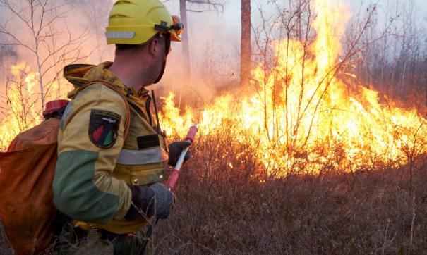 В Якутии пожары уничтожили почти 350 тысяч гектаров леса