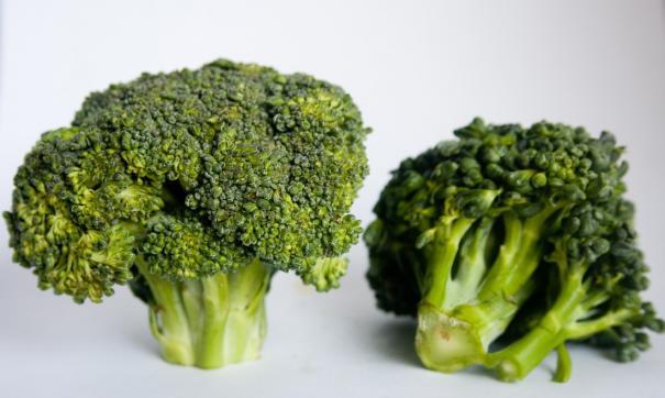 Врачи рассказали о пользе брокколи для здоровья