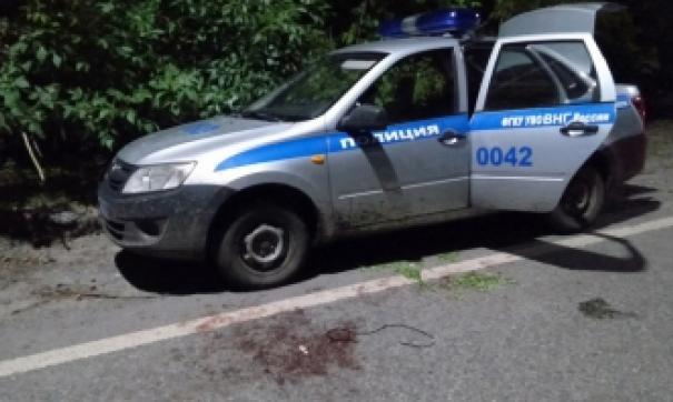 Мужчина вел прицельную стрельбу по полицейским