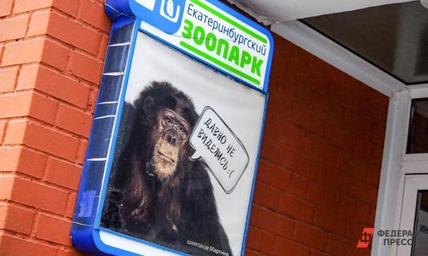 В Екатеринбурге с завтрашнего дня откроют городской зоопарк