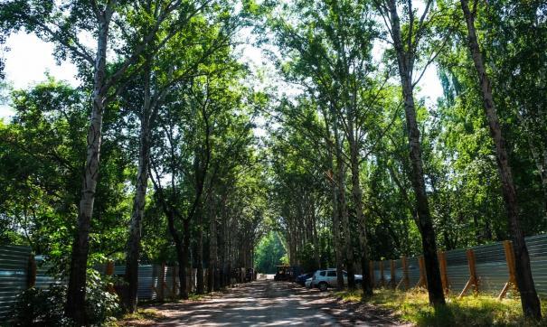 В екатеринбургском парке XXII Партсъезда будет высажено более 1000 новых кустарников