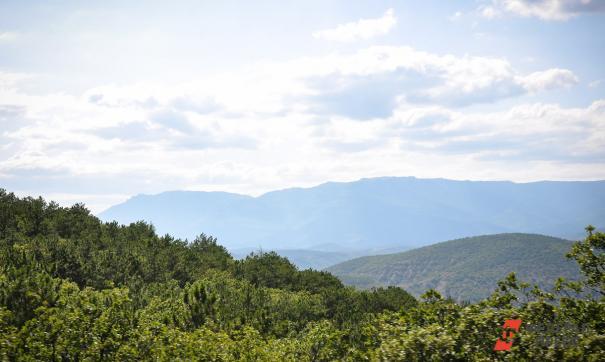 Часть Торгашинского хребта признали памятником природы
