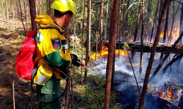 Рослесхоз направил группировку в Томскую область для тушения пожаров