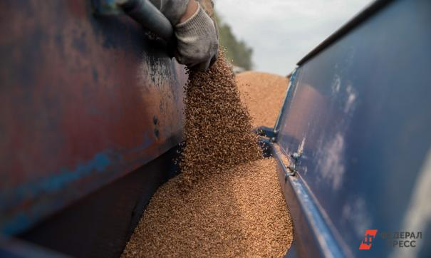 В Красноярском крае собрали 2,2 млн тонн зерна