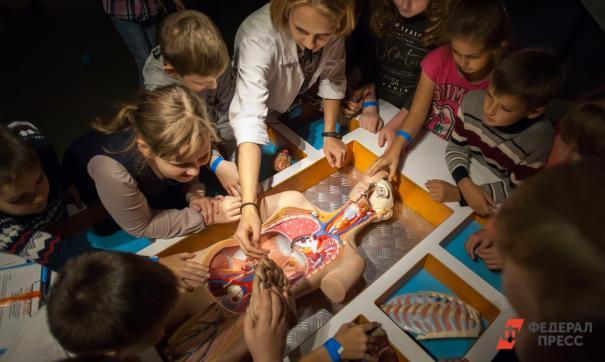 В Ульяновске появился уникальный проект начальной школы, в которую дети каждое утро бегут с радостью