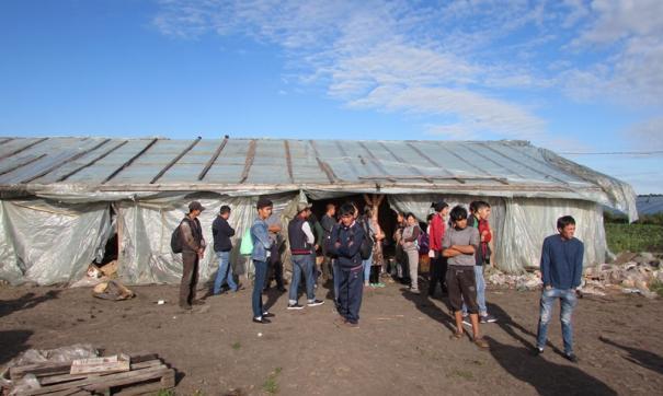 Трудовые мигранты не смогли покинуть Россию из-за пандемии