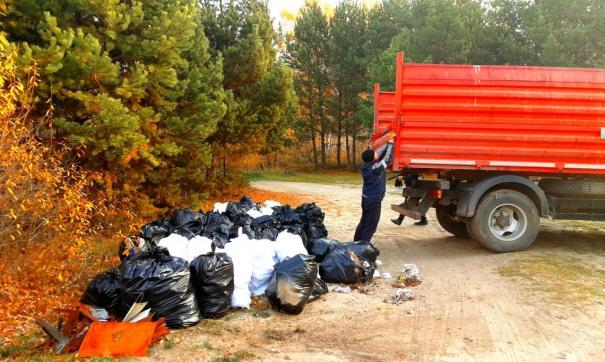 Тюменский регоператор вывез с берега Андреевского озера 7 тонн отходов