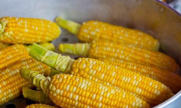 Диетолог рассказала, кому нельзя есть кукурузу