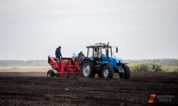 Приморские власти распорядятся неиспользуемыми сельхозугодиями