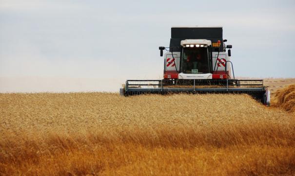 В  регионе собрано 2,8 млн тонн зерна