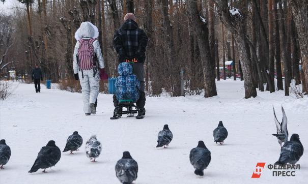 Всего в Приморье новые ежемесячные пособия получили 48,4 тысячи детей