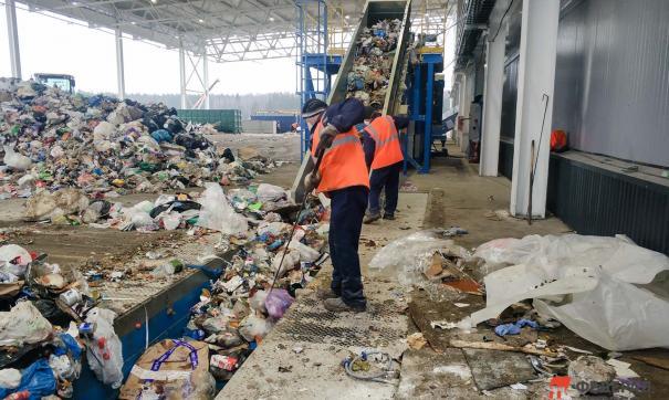 Двух рептилий обнаружили сотрудники мусоросортировочного комплекса в пакете с отходами