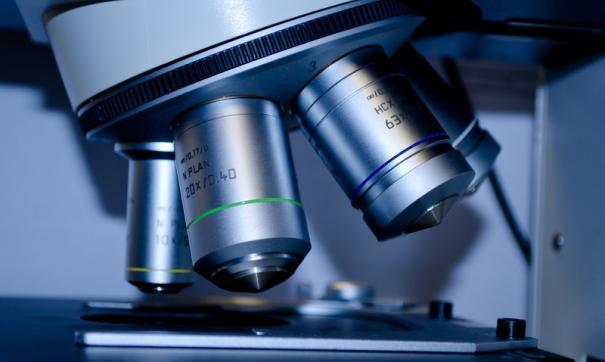 Ученые выяснили, как долго сохраняются антитела к коронавирусу