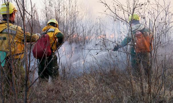 В настоящий момент уже началась подготовка к пожароопасному сезону 2021 года