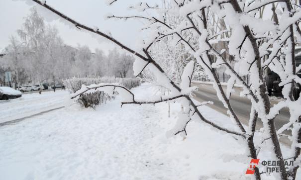 В Челябинской области похолодает до -12 градусов