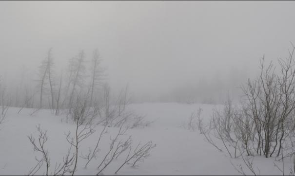 Снежные заносы на дороге