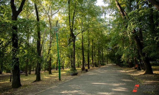 Количество парков культуры и отдыха в Подмосковье увеличилось