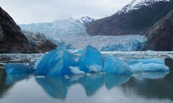 В Петербурге открылся форум «Арктика: настоящее и будущее»