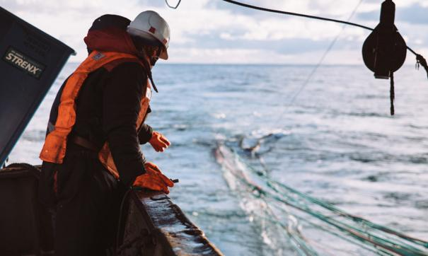 На этой неделе начнется очередной суд, связанный со спором двух крупнейших дальневосточных рыбодобытчиков