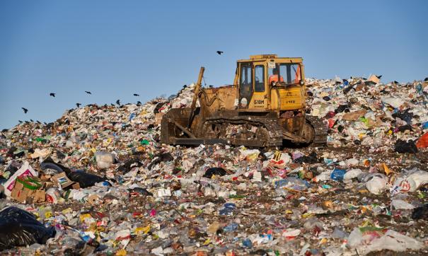 Александр Аникин попросил полицию выяснить, кто сортирует отходы