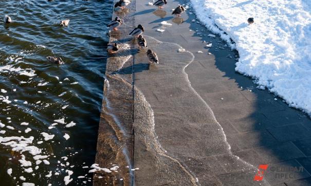 В Сибири вода может подтопить около 700 населенных пунктов