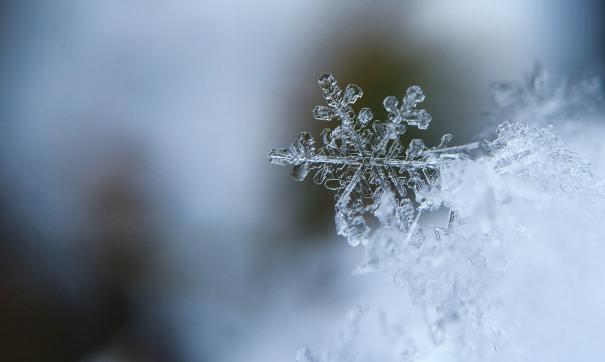 Гидрометцентр рассказал о температурных аномалиях этой зимой