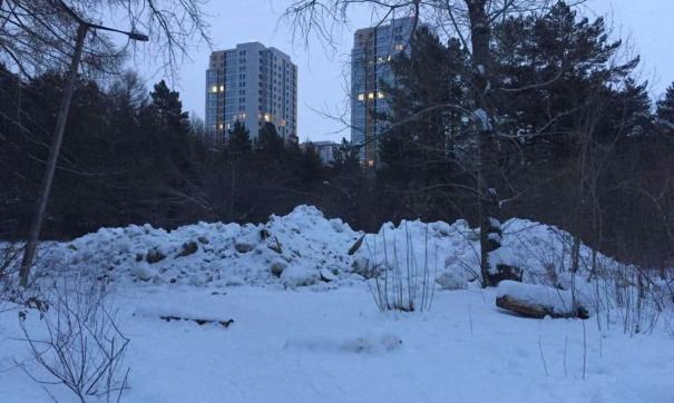 Кучи грязного снега вывалили прямо в бору